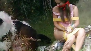 Naughty girl was tied and fucked by Panda