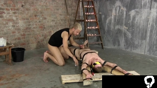 Bound and blindfolded twink jerked off by master