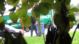 Truck piss